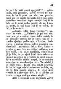 [Stran 41]