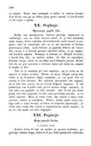 [Stran 110]