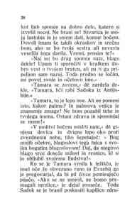 [Stran 28]