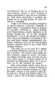 [Stran 317]