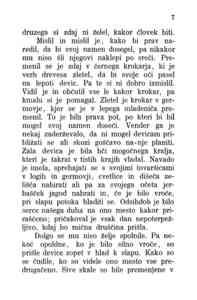 [Stran 7]