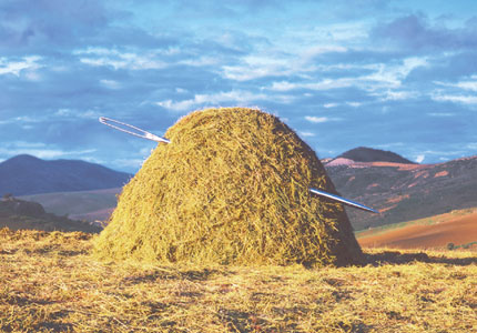 needle in a haystack blogging