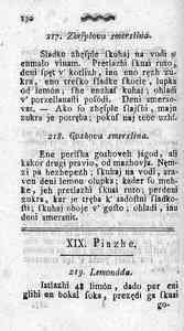 [Stran 146]